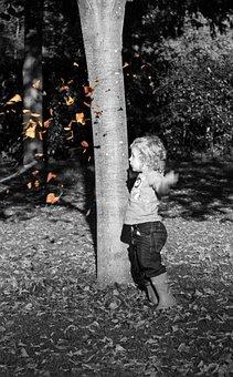 Boy, Leaf, Autumn, Fall, Baby Boy, Child, Cute, Kid