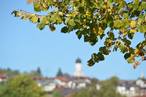 Autumn, Sky, Leaves, Autumn Colours, Village, Land
