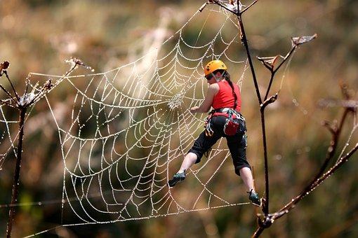 Free Climbing, Climb, Cobweb, Unsecured, Mountaineer