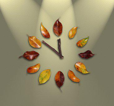Watch, Time, Leaves, Pointers, Time Passing, Minutes