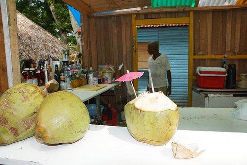 Coconuts, Caribbean, Drink, Alcohol, Levantado, Bar