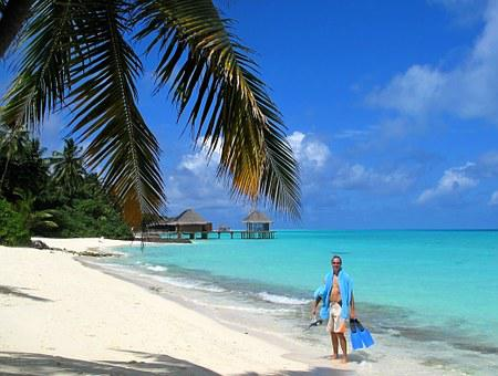 Maldives, Sea, Summer, Coral