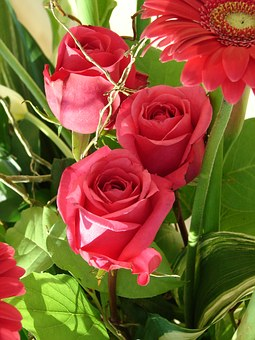 Roses, Bouquet, Flowers, Bloom, Floral, Love, Wedding