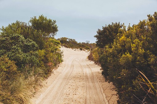 Dirt Road, Road, Journey, Landscape, Nature