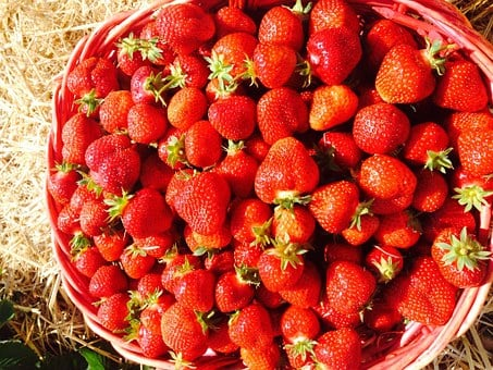 Strawberries, Red, Sweet, Delicious, Berry, Plant, Food