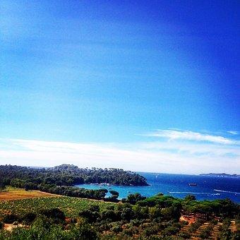 Sky, View, Sea, South, France, Vine, Olive Trees