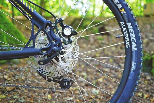Mountain Bike, Bike, Cycling, Wheel, Activity, Sport