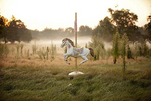 Horse, Carousel, Carousel Horse, Fair, Fog, Field