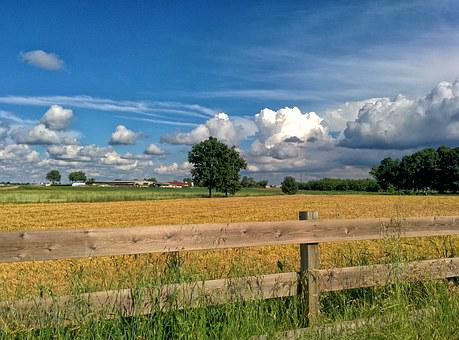 Italy, Wheat, Spring, Nature, Landscape, Sky, Ears