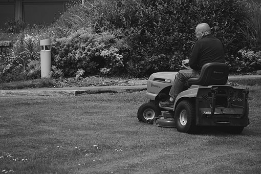 Man, Turf, Black And White, Lawn Mower, Mowing, Work