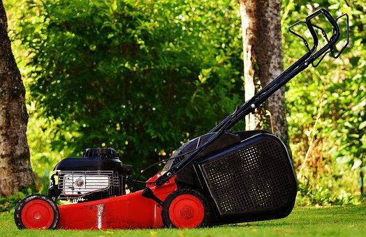 Lawn Mower, Gardening, Mow, Cut Grass, Grass Surface