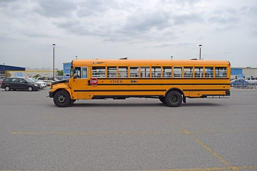 School Bus, Side, Long, Bus, School, Transportation