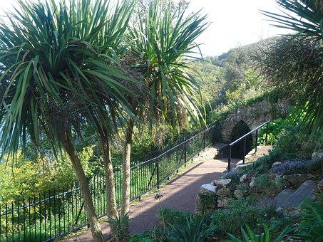 Babbacombe, Devon, Archway, Walkway, Palmtrees, Seaside