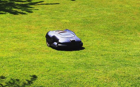 Rush, Maintained, Lawn Mower, Robot, Sunny