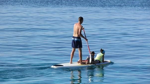 Paddle, Surfboard, Vacation, Paddleboarding, Leisure