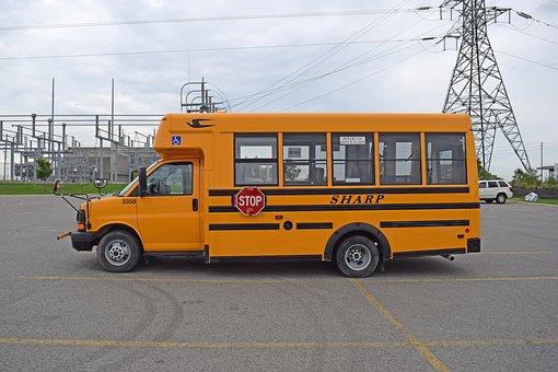 School Bus, Orange, Bus, School, Transport, Education
