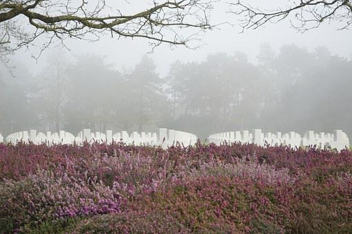 Cemetery, Fog, Grey Sky, Second World War, War, Tribute