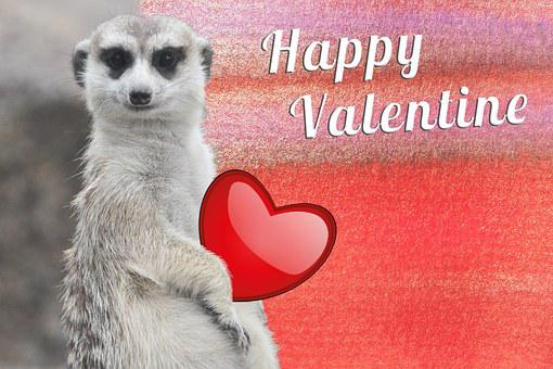 Valentine, Heart, Shiny, Valentine's Day, Love, Fund