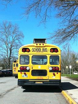 School, School Bus, Bus, Transportation, Yellow