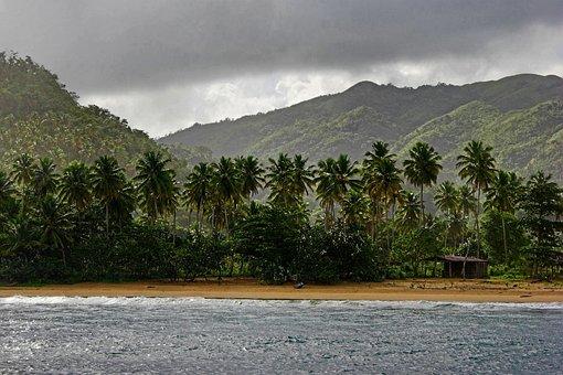 Dominican Republic, Tropical Beach, Palm Trees