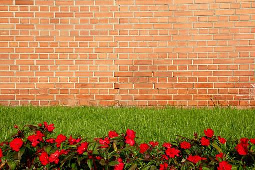Wall, Red, Flowers, Rush, Brick, Bricks, Brick Wall