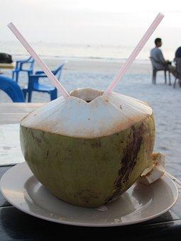 Coconut, Beach, Malaysia, Langkawi