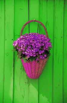 Wall, Basket, Flowers, Decoration, Rustic, Decorative