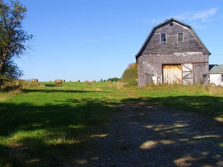 Field, Old, Barn, Rural, Agriculture, Nature, Country