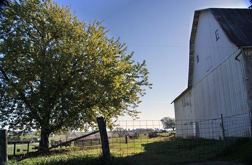 Barn, Rural, Farm, Country, Farming, Rustic, Weathered