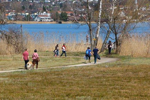 More, Sunday, Recovery, Lake, Walk, Enjoy