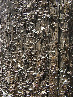 Staples, Wood, Background, Texture, Boards