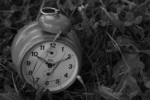Clock, Grass, Old, Nature, Deadline, Time, Hour