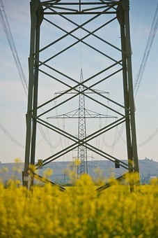 Strommast, Energy, Electricity, Oilseed Rape