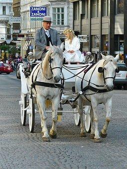 Vienna, Coach, Carriage Ride, Horses, Horse