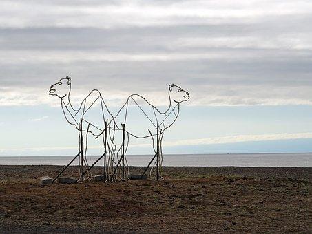 Camels, Dromedary, Sculpture, Lanzarote
