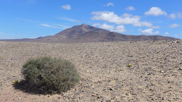 Leave, Lanzarote, Island, Spain, Summer, Clouds