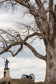 Civil War, Tree, Scene, War, History, Usa, America