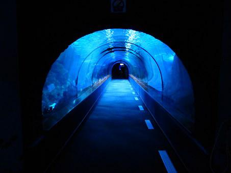 Tunnel, Underwater, Aquarium, Shark Tank, Blue, Dark