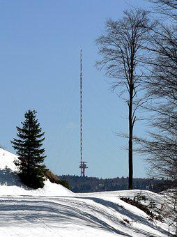 Tv Transmitter, Winter, Snow, Trees, Path, Country