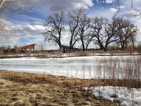 Frozen Pond Landscape, Winter, Ice, Nature, Pond