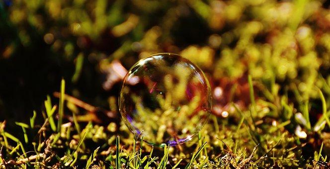 Soap Bubble, Colorful, Meadow, Grass, Balls