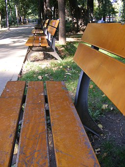 Bench, Benches, Park, Summer, Nature, Relxation