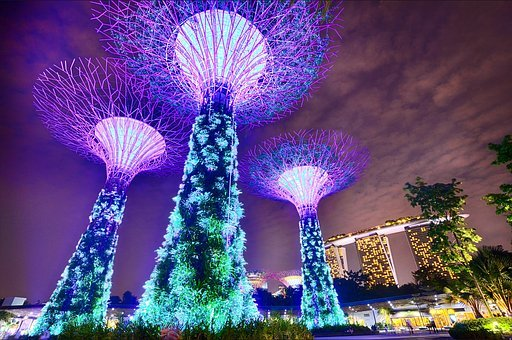 Singapore, Gardens By The Bay, Long Exposure