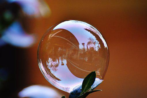 Soap Bubble, Colorful, Buxbaum, Buxus, Balls