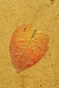 Map, Parchment, Ancient, Background, Texture, Zen, Time