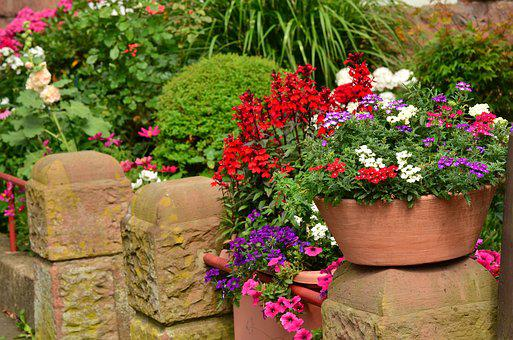 Summer Flowers, Balcony Plants, Flowerpot, Wall
