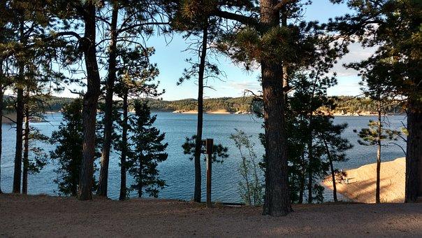 Trees, Lake, Rampart Reservoir, Reservoir, Colorado
