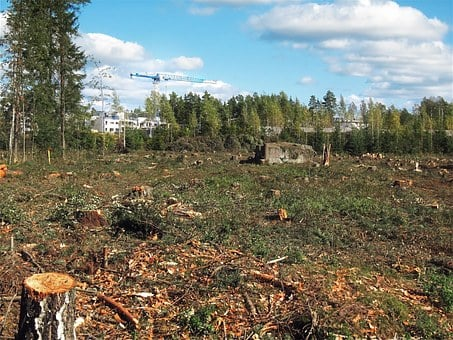 Deforested, Construction, Outskirts, Helsinki, Finland