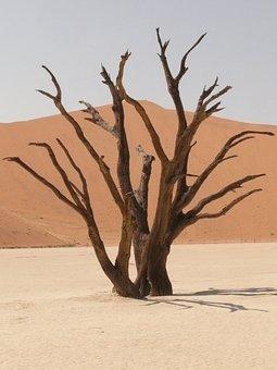 Deadvlei, Sahara, Dead Vlei, Namibia, Drought, Sand