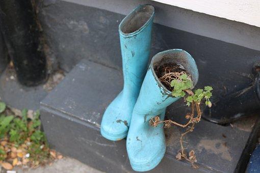 Wellington Boots, Boots, Plant, Wellington, Rubber